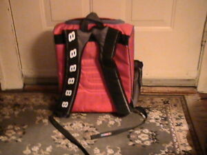 DALE EARNHART JR BACKPAC AND LUNCH BOX Windsor Region Ontario image 3
