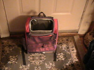 DALE EARNHART JR BACKPAC AND LUNCH BOX Windsor Region Ontario image 5