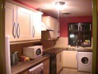 One double bedroom flat for rent