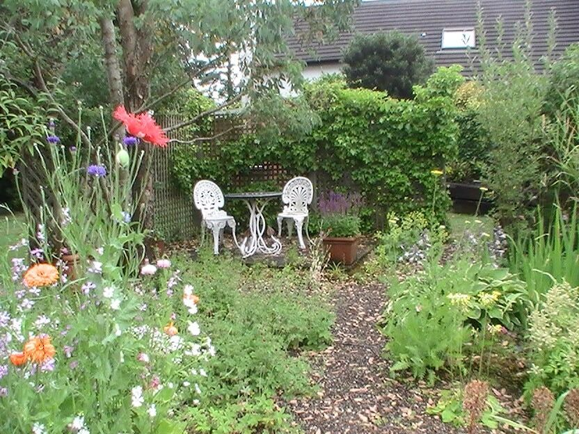 Mullview Garden And Home Maintenance In Newtownards County Down