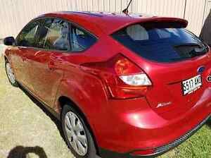 2013 Ford Focus Hatchback Cumberland Park Mitcham Area Preview