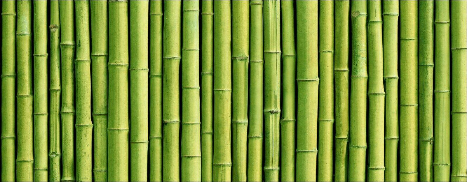 BRISE VUE IMPRIMÉ, jardin, terrasse, balcon déco Bambous 9131 - EUR ...