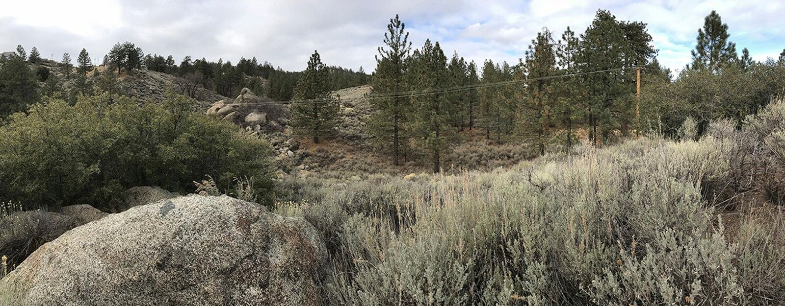 1.4 Acre Vacant Land in the Tehachapi Mountains. Beautiful w Trees and Vista