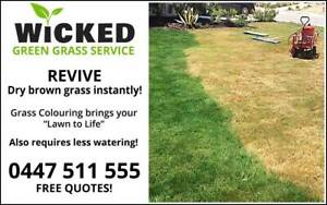 Grass Restoration - Instantly Revive Brown Dry Grass!