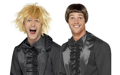 Mens 90's Dumb & Dumber Wig Set Harry Lloyd Fancy Dress Funny Film Costume Hair