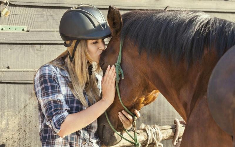 Jedes Reitabenteuer beginnt mit Herzklopfen - und der Liebe zu einem ganz besonderen Tier. (© Thinkstock / The Digitale)