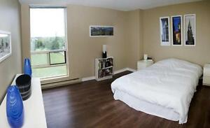 Spacious 2 Bedroom ***DELUXE*** Belleville Apartment for Rent