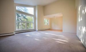 MOVE IN TODAY AND DON'T PAY UNTIL JANUARY, LARRY UTECK APARTMENT