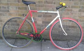 Vintage singlespeed. 80s Apollo. Fixie / Fixed. Check my other bicycles