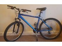 PInnacle Source Hybrid Mountain Bike Large - Recently Serviced