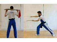 Beginners Classes - Kung Fu