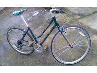Raleigh Classic Design Aluminum Frame Bike