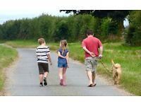 Strutting Muts Local Dog Walker strutting around Wells,-next-the-sea, Burnham Mkt & close villages