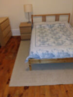 Nicely furnished room downtown available July 1 - female only