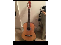 Acoustic Guitar (Comes with a stand, mute, pluck and auto-tuner.)