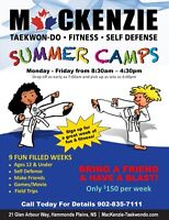 Taekwon-Do Summer Camps