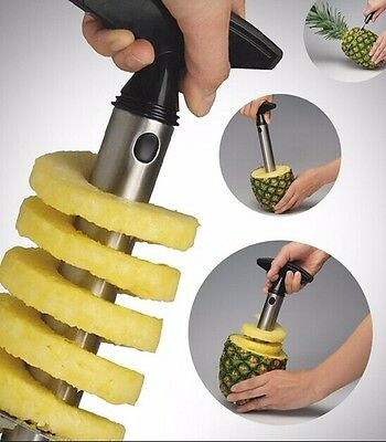 Easy Gadget Kitchen Fruit Pineapple Corer Slicer Cutter Peeler Stainless Steel