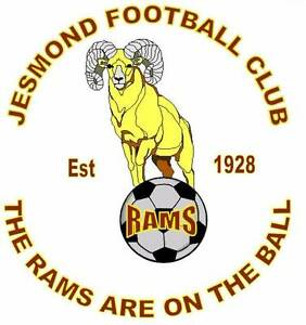 Jesmond FC URGENTLY Requires Under 14s and 15s players Wallsend Newcastle Area Preview