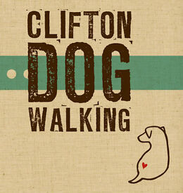 DOG WALKER / DOG WALKING - SPACES AVAILABLE