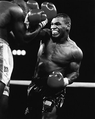 Former Heavyweight Champion MIKE TYSON Glossy 8x10 Photo Boxing Print Poster