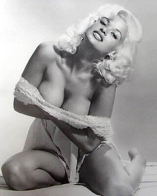 Jayne Mansfield 8x10 Classic Hollywood Photo. 8 x 10 B&W Picture #23