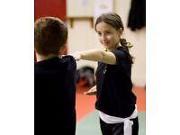 Martial Arts Classes Neath