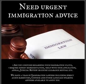 Immigration advice and solutions