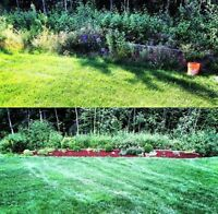 Weeding, Mulching, Edging, Planting and Lawn Maintenance