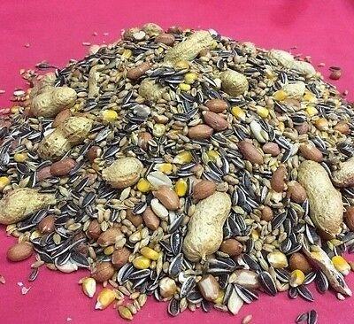 Squirrel Food Mix Chipmunk Wild Bird 1kg Garden Bird Sunflower Monkey Nuts Corn