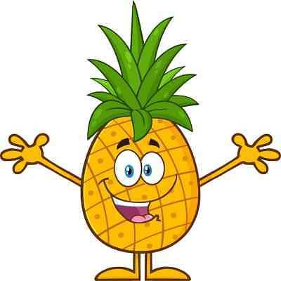 30 Custom Happy Cartoon Pineapple Personalized Address Labels