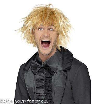 Men's 90's Harry Dumb & Dumber Blonde Surfer Fancy Dress Wig Comedy Stag Theme