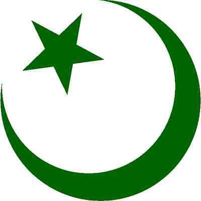 30 Custom Green Star Crescent Personalized Address Labels