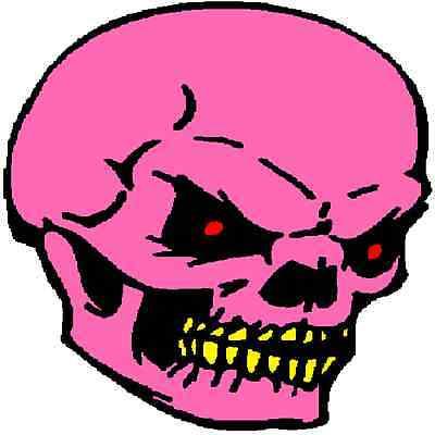 30 Custom Pink Skull Personalized Address Labels