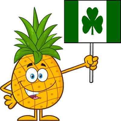 30 Custom Irish Pineapple Personalized Address Labels