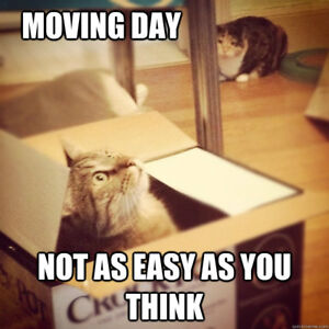 Boxes, Moving, and Packing Supplies??