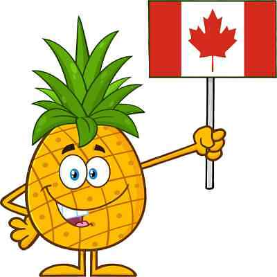 30 Custom Canadian Pineapple Personalized Address Labels