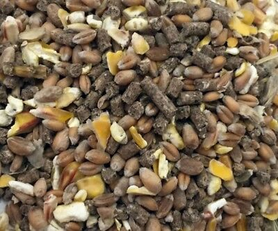 20Kg Mixed Corn with Layers Pellets feed for hens, ducks-NEXT DAY DPD DELIVERY-