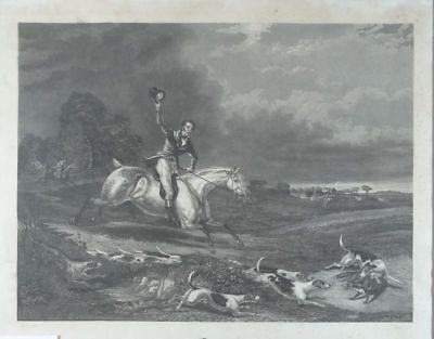 Fuchsjagd - Vogel - Aquatinta Radierung - Hunde Pferd jagen Sport Hetzjagd 1820