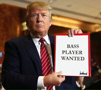 ROCK BASSIST WANTED