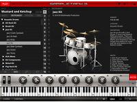 VARIOUS AUDIO PLUG-INS (MAC or PC)