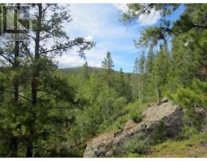 4.2 acres, inside city limits! REALTOR® Graham Frey