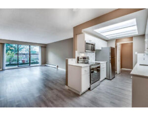 Cheapest fully renovated condo unit close to everything-M Ridge-