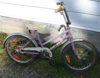 Flower Girl Bicycle