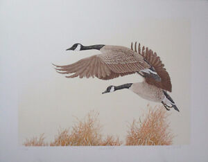 Limited Edition Wildlife Lithograph Print by Chris Forrest!