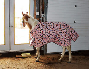 Horse Blankets and sheets, keep your horse warm and dry