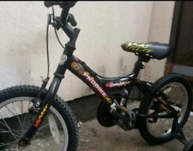 Boys pro bike