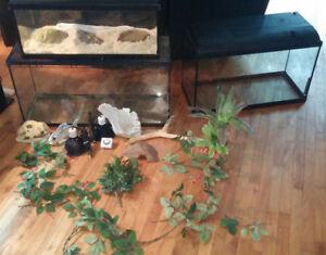 VEND LE TOUT 125$ aujourd'hui terrarium pour reptile dragon