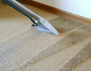 CARPET STEAM CLEANING/ END OF LEASE CLEANING