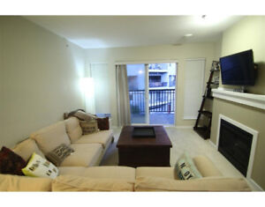 Furnished 2 bed 2 bath unit close to Lougheed Mall & Skytrain st
