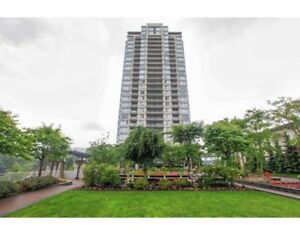 2 bedrooms for rent ,Lougheed mall area